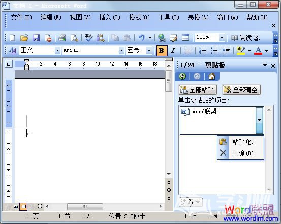 Word2003剪切板