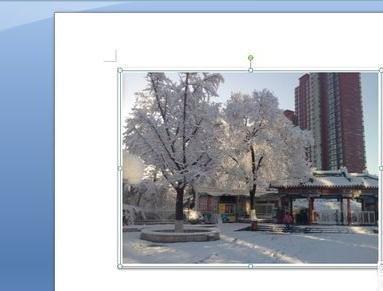 WORD插入图片并修改其形状的方法步骤详解