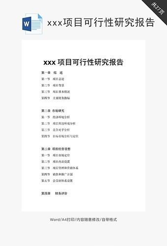 xxx项目可行性研究报告word文档