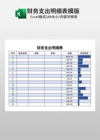 财务支出明细表模版